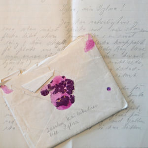 Lasches kärleksbrev.