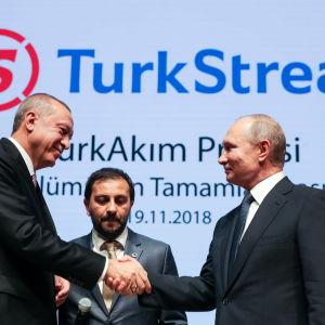 Putin och Erdogan skakar hand under en ceremoni för gasrörprojektet