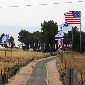 Amerikanska och Israeliska flaggor i Israels judiska koloni.