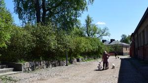 Folk på Sveaborg rastar sina hundar