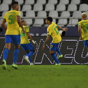 Brasilia juhlii maalia