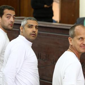 Al Jazeera-journalisten Peter Greste som greps i Egypten 2013 och frigavs 1.2.2015