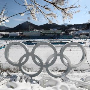Olympiska ringarna med snö