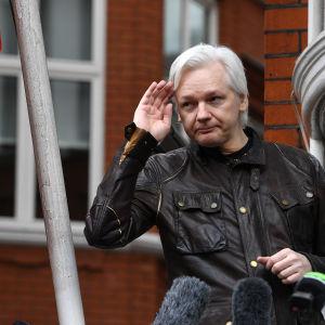 Julian Assange framför mikrofoner på ett presstillfälle utanför Ecuadors ambassad i London.
