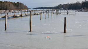 En nödraket har brunnit slut och dess fallskärm har landat på isen i en småbåtshamn.