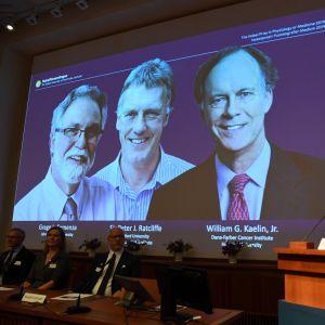 Nobelkommitténs sekreterare Thomas Perlmann med en bild på de tre prismottagarna.
