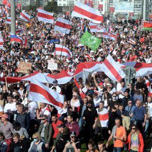 Valtava väkijoukko täyttää kadun. Mielenosoittajat kantavat valkopunaisia lippuja.