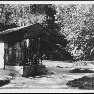 Monrepos`n puiston toivomuslähde