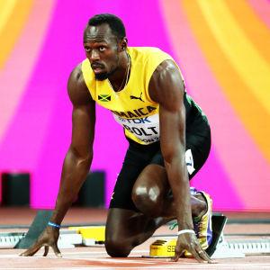 Usain Bolt gör sig redo för start.