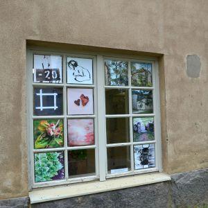 Fotografier i fönster