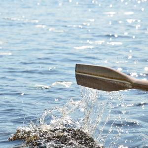 En åra som just har dragits i vattnet.