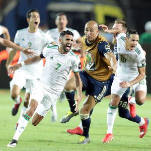 Algeriets landslagsspelare firar ett mål.