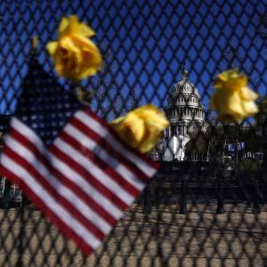 Stängsel runt Capitolium i Washington DC. I förgrunden syns en amerikansk flagga.