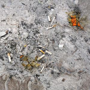 Tupakantumppeja ja pikkuroskia hiekkamaassa.