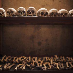 Bild på rader med människoskallar och ben.