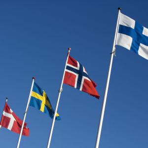 Danmarks, Sveriges, Norges och Finlands flagga i rad.