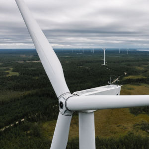 Tuulivoimapuisto Iissä.