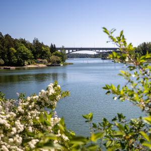 Hessundin silta Paraisilla.