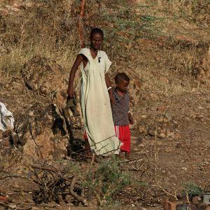 Etiopiska flyktingar påväg till Sudan