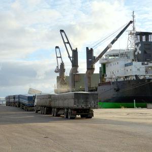Ett fraktfartyg står i en hamn, flera lastbilar köar utanför fartyget.