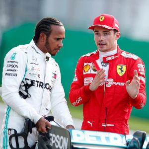Hamilton och Leclerc pratar med varandra.