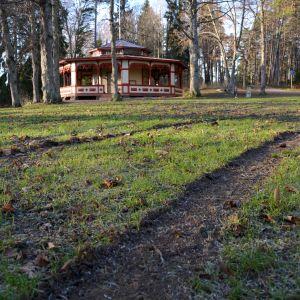 Bilspår på gräsmatta på Kokonudden i Borgå