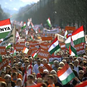 Personer som stöder Fidesz demonstrerar i Budapest