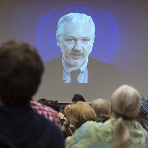 Julian Assange deltar per webb-tv i en konferens vid FN-högkvarteret i Geneve i Schweiz den 23 mars 2015.
