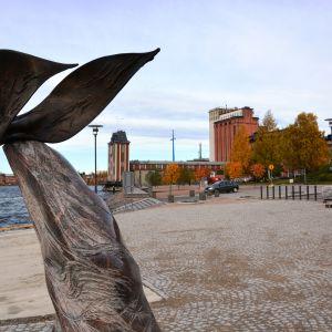 Åbo Akademi i Vasa.