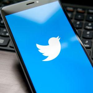 Twitters logo.
