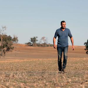 Spannmålsodlaren Rhys Turton promenerar på sin tomma kornåker i västra Australien