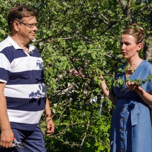 Leif Blomqvist och Lee Esselström framför ett äppelträd på Strömsö