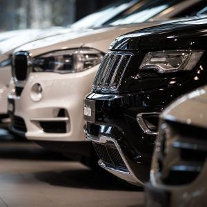 Närbild på flera bilars framkofångare på rad.
