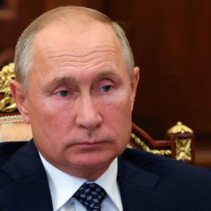 En porträttbild av Vladimir Putin sittandes i en vacker stol.