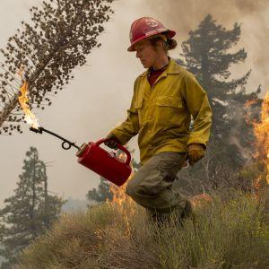 En brandman rör sig på ett fält i Kalifornien i USA och släcker bränder.