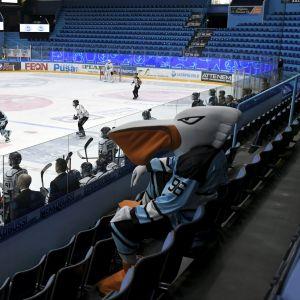 Pelicans mot TPS i hockeyligan.
