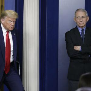 Donald Trump ja Mike Pence saapuvat lehdistötilaisuuteen. Anthony Fauci oli jo paikalla.