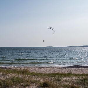 Laaja kuva merestä, jossa surffaa leijalautailijoita, etualla hiekkarantaa.