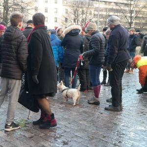Människor och hundar vid djurens julfred utanför Mikaelskyrkan i Åbo