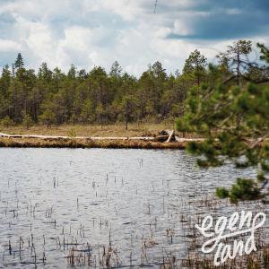 Pitkospuut järven vastarannalla suomaastossa