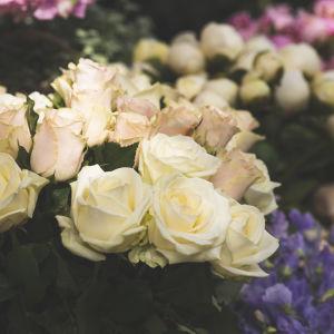 Kukkia kukkakaupan edessä