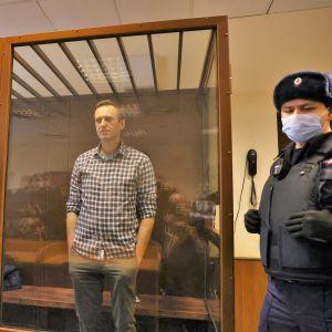 Alexej Navalnyj stående i en glasbur i rättssalen i Moskva.