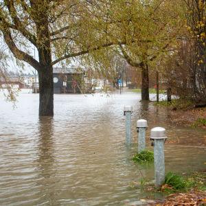 Översvämning vid Östra åstranden i Borgå. På bilden syns ett parkområde som ligger delvis under vatten.