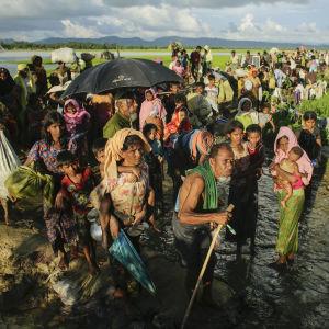 Rohingyer på flykt från Burma.