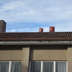 Taket på gymnastiksalen bågnar.