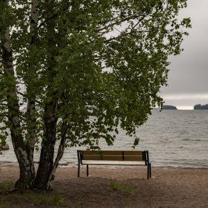 Puistopenkki uimarannalla, pilvinen sää.