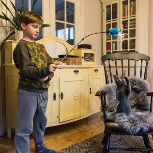 Eliel leker med kattungen Roksu.