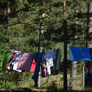 En bild på ett klädstreck som är upphängt mellan två tallar. På strecket hänger handdukar i olika färger och en del är randiga.