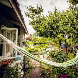 En koloniträdgård med en hängmatta, en liten stuga, och mycket blommor.
