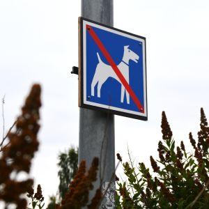 Förbjudet för hundar-skylt.